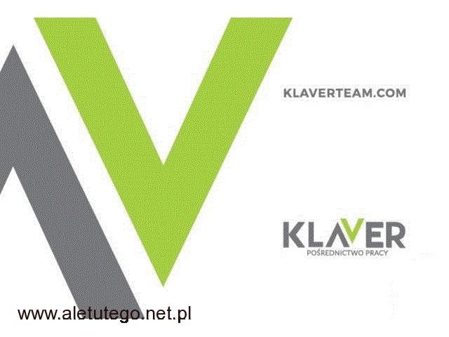 Szklarnie, sortownie warzyw i owoców- praca w Holandii